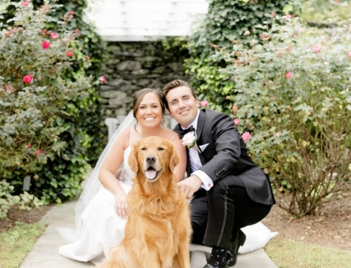 C&D's Romantic Garden Wedding at Airlie